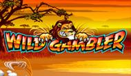 Wild Gambler – это игровой автомат без регистрации в GMS казино
